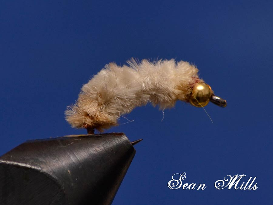 Sean Mills Flies
